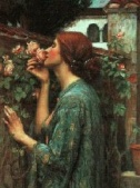 Waterhouse My sweet Rose