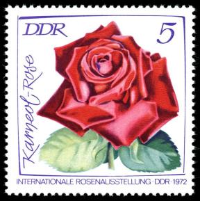 DDR Briefmarke Rose Karneol Foto Wikipedia